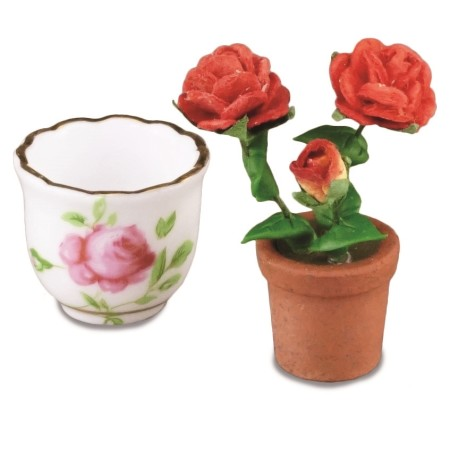 Pot With Rose Bush